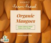 Order Best Organic Mangoes Online|Organic Aam
