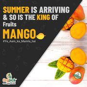 Buy Organic Mangoes Online in Baner,  Pune