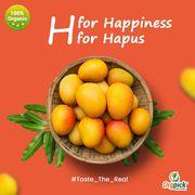 Buy Organic Hapus Mangoes Online