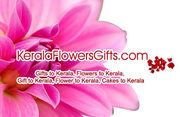 Send Spectacular Gifts for Dad Same Day to Kerala by ordering online